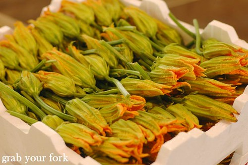 Zucchini flowers | by Helen (Grab Your Fork)