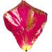 pétale de rose