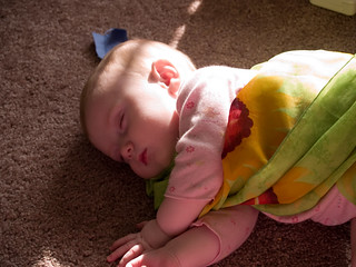 Makayla taking a nap on the floor | by james.thompson