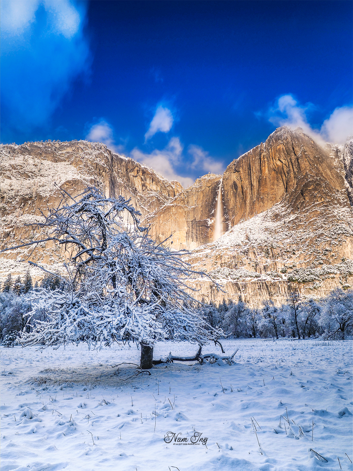 Noël au Yosemite 31749413272_e143dd3b77_o