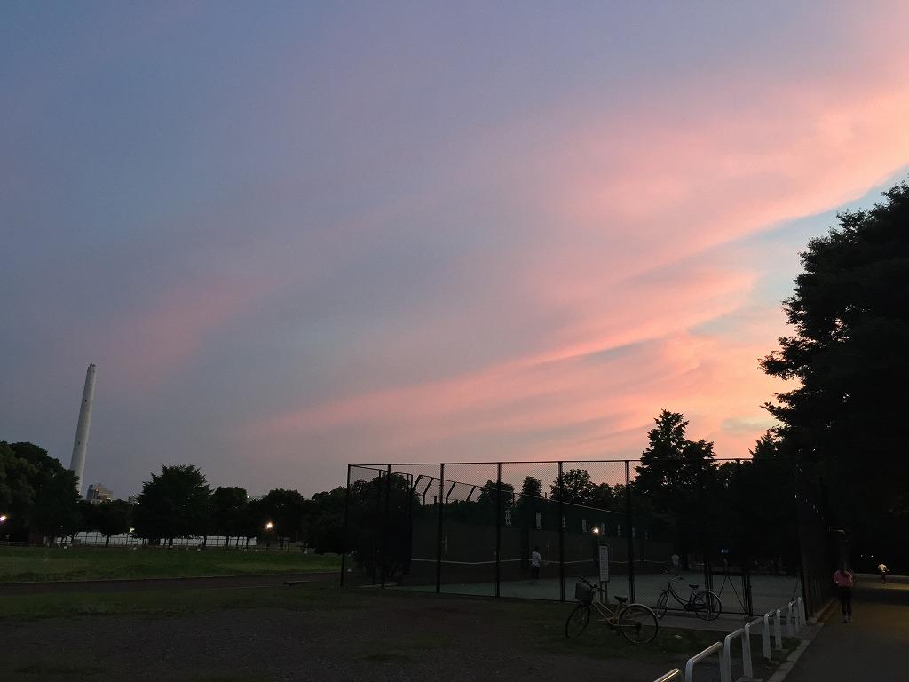20150610_光が丘 (1)