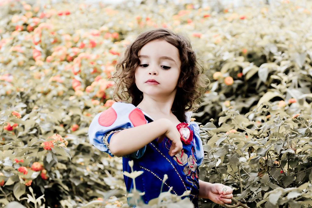 Snow White Hernanpbawordpress Hernn Piera Flickr