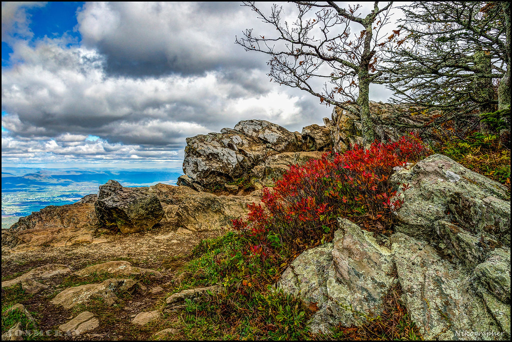 Shenandoah National Park - Hawksbill Mountain