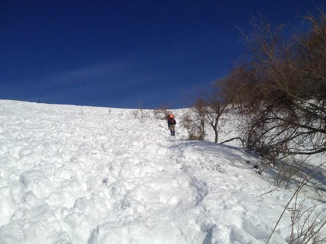 伊吹山 表登山道 3合目への直登