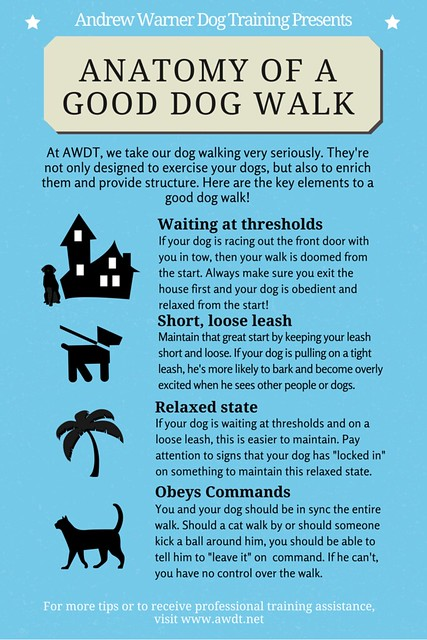 Anatomy of a good dog walk