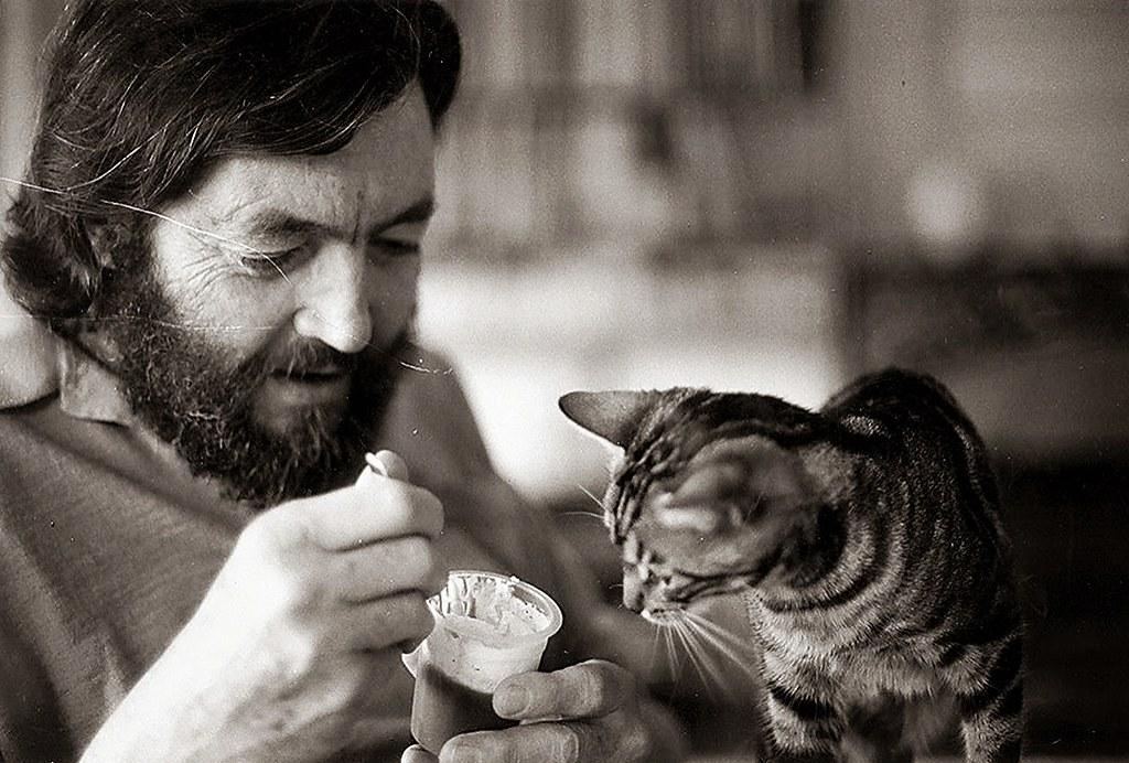 Resultado de imagen para Julio Cortázar gato