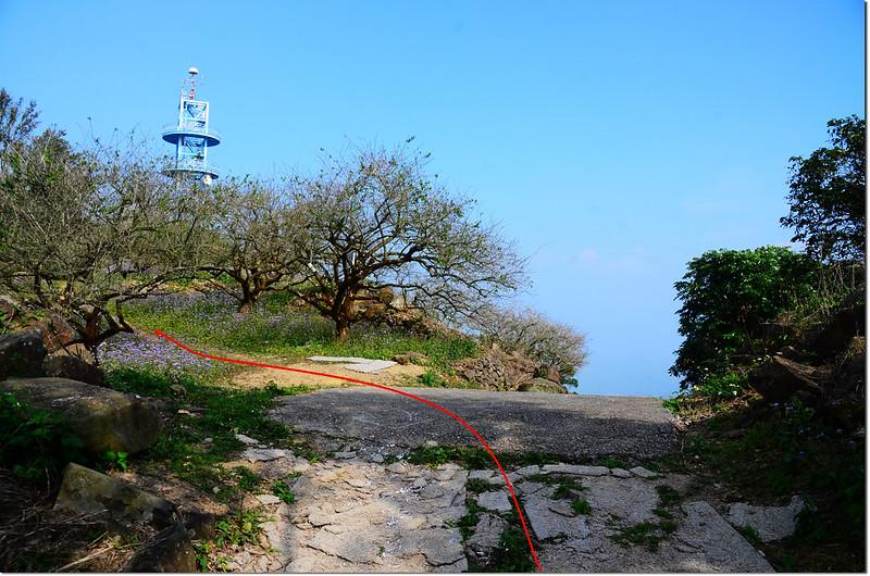 枕頭山電波偵測站岔路