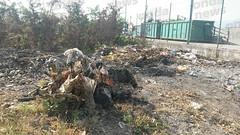 incendio spazzatura sant'arsenio