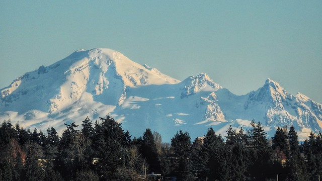 Mt. Baker Original