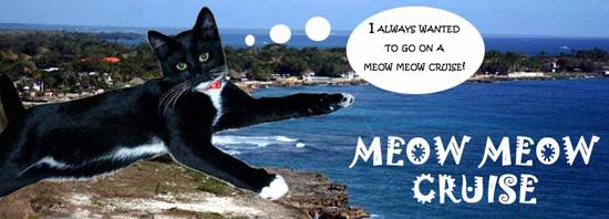 meow-meow-cruise-5-17-15