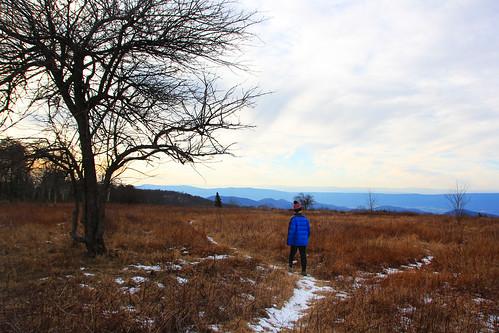 david - big meadows