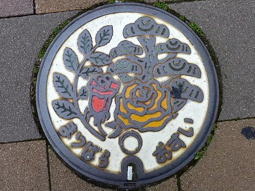 Matsubara Osaka, manhole cover 2 (大阪府松原市のマンホール2)