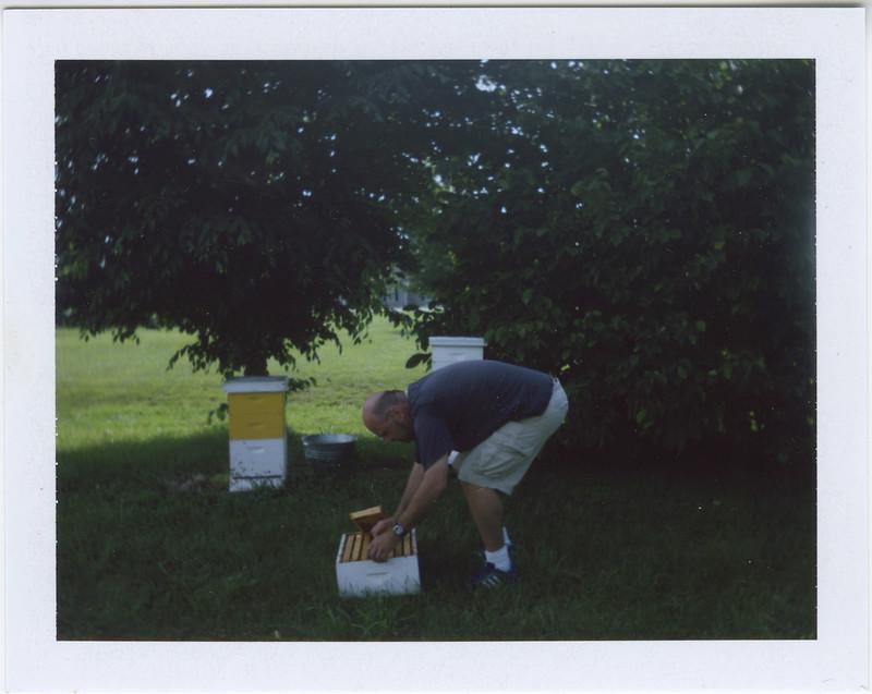 2015.06.05_ polaroid summer _lemon
