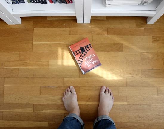 lukija aamujunassa pienikirjasto