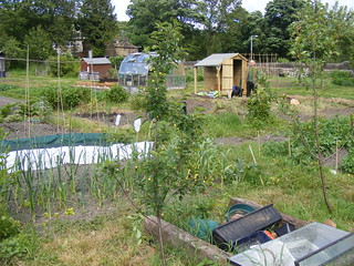 Allotment from SW