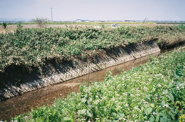 A clean stream