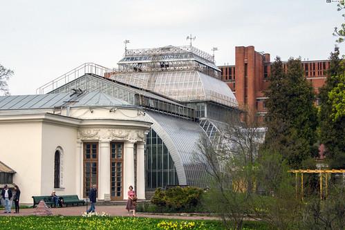 Saint Petersburg Botanical Garden Subtropical Greenhouse Flickr