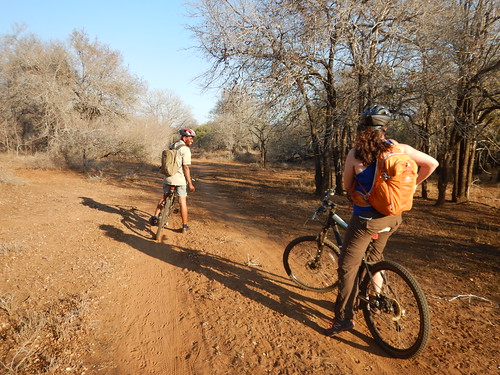 Mountain biking, this is just after a giraffe popped out of nowhere and stumbled down the road away from us