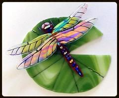 3 DDragonfly