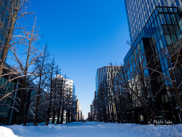 Winter blue sky