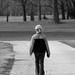 Walking Through Lincoln Park
