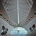 Milwaukee Art Museum Splendor