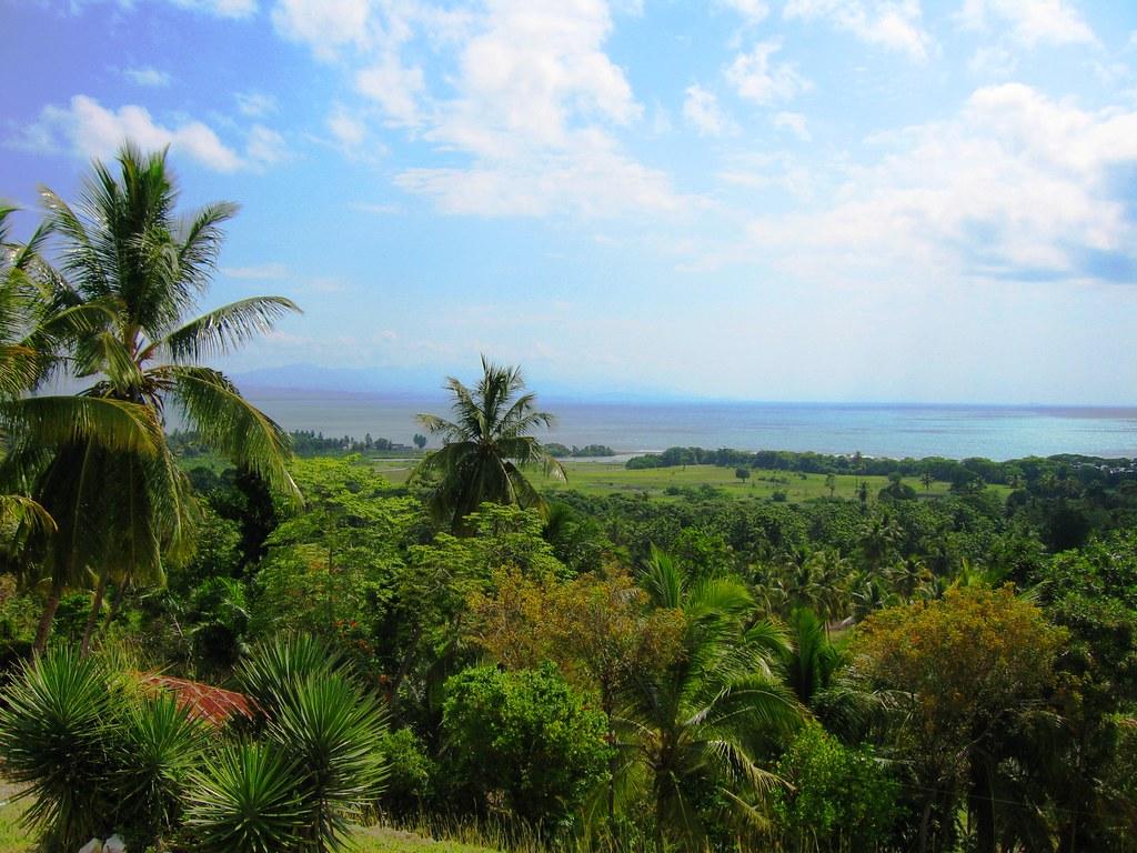 View of Haitian Landscape