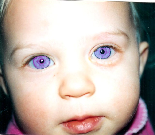 Savannah Purple Eyes