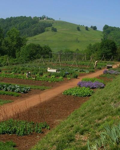 Thomas Jefferson's Vegetable Garden