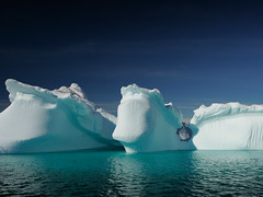 Icebergs in Greenland | by nick_russill