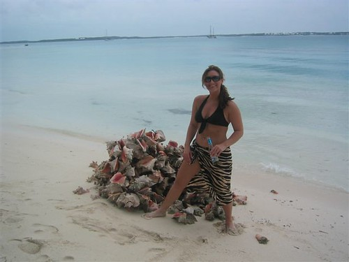 Elita_Conch_Pile | by islandmommy