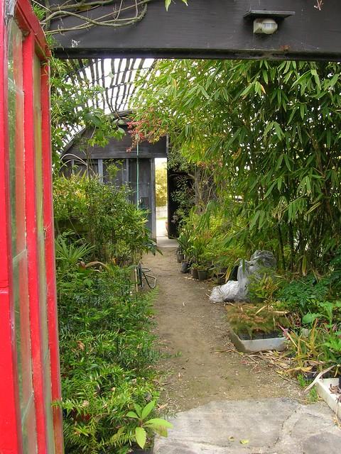Greenhouse at Paloma Gardens | Also see Paloma Gardens, Clii ...