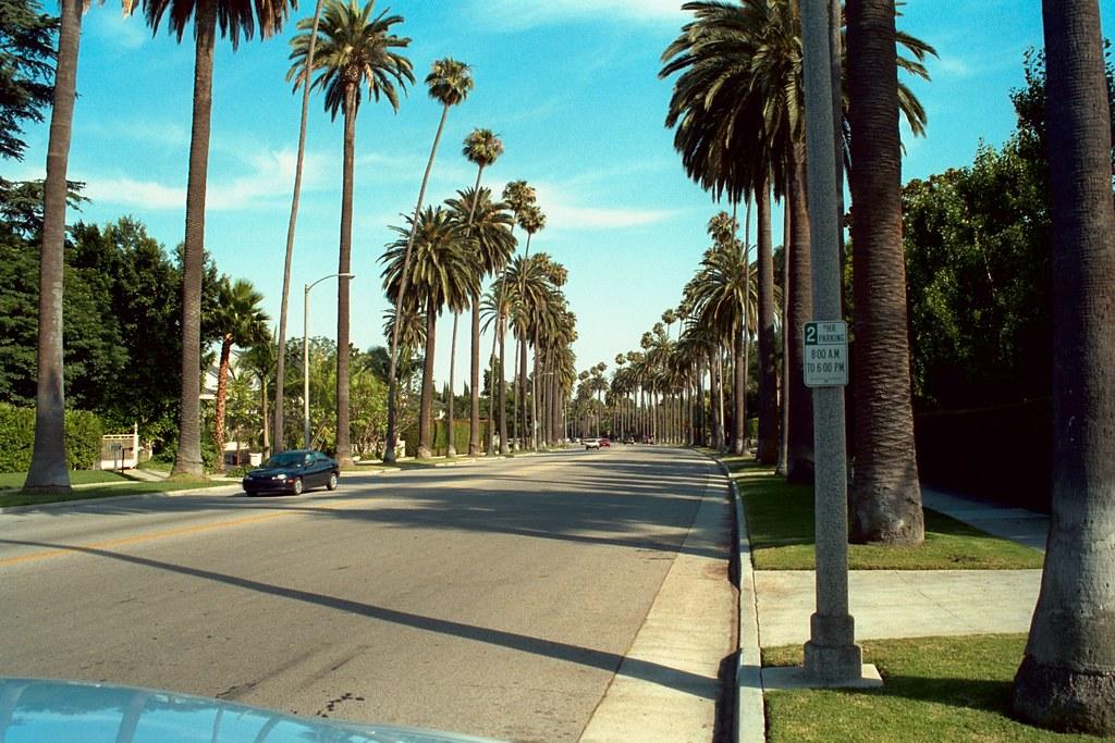 Beverly Hills The Palm Restaurant