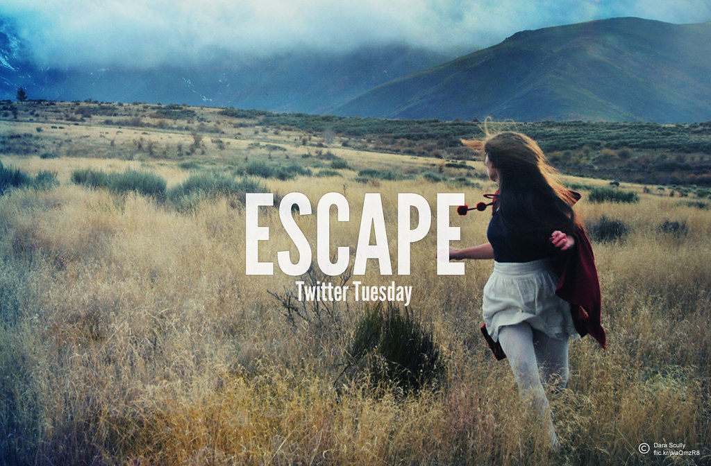 Twitter Tuesday Escape By Flickr