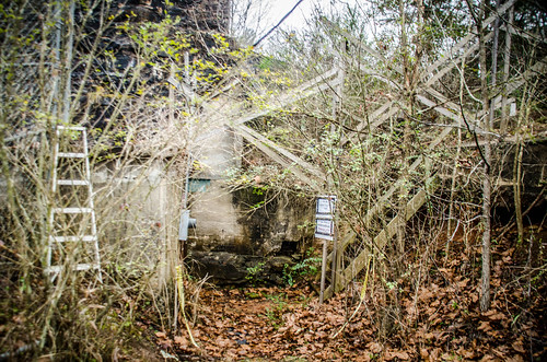Henry River Mill Village-101