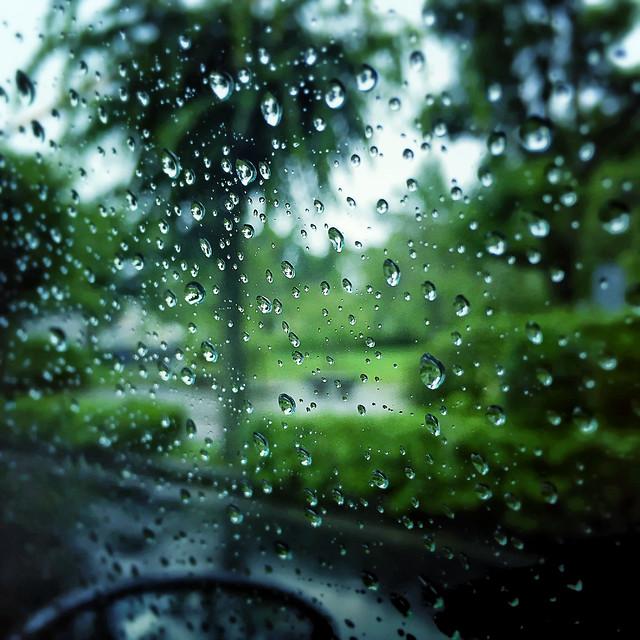 the beginning of the rainy season