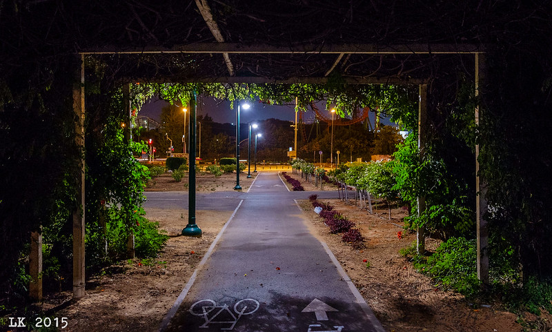 HaYarkon Park at Night