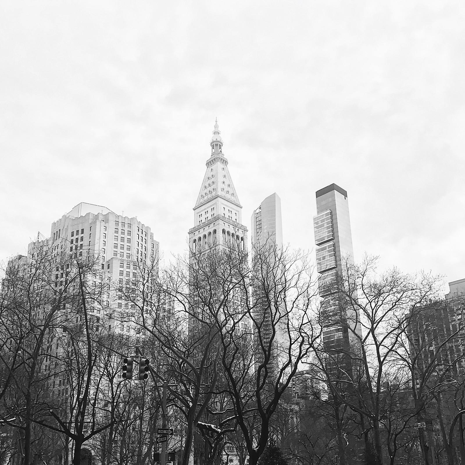 1543-nyc-newyorkcity-newyorkfashionweek-fashionweek-nyfw-winter2017-clothestoyouuu-elizabeeetht