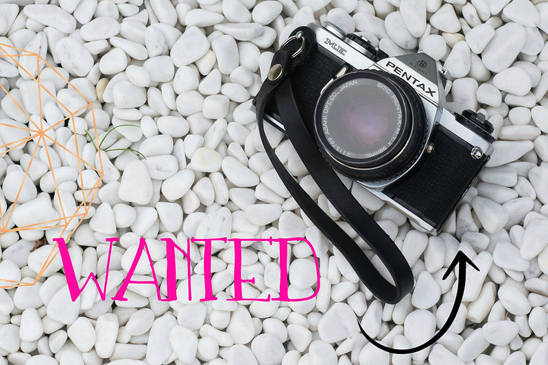 Titel Wanted: The Perfect Compact Camera for Blogging