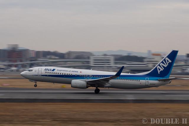 Itami Airport 2017.1.31 (31) JA65AN / ANA's B737-800
