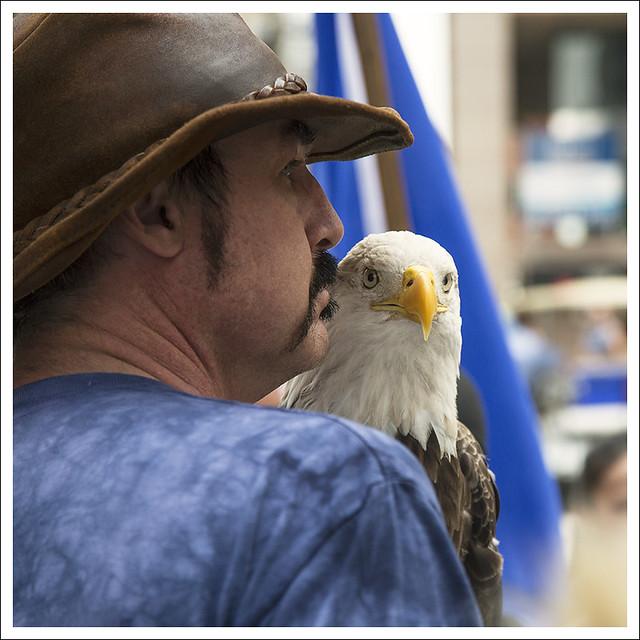 Proud Eagle 1