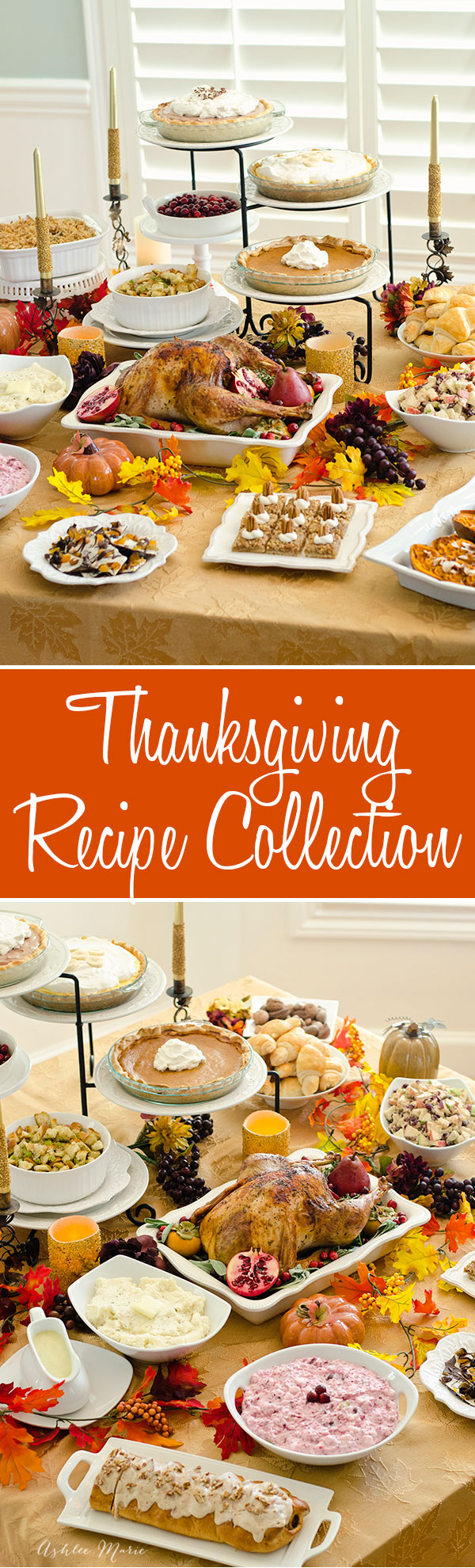 Collection of Thanksgiving recipes from some of your favorite bloggers