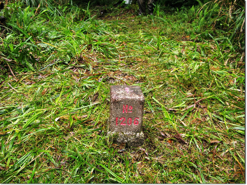 新城山二等三角點(# 1206 Elev. 1440 m) 1
