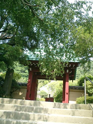 06.06.24鎌倉長谷「光則寺」http://mitch1.blog.so-net.ne.jp/2006-06-24-4