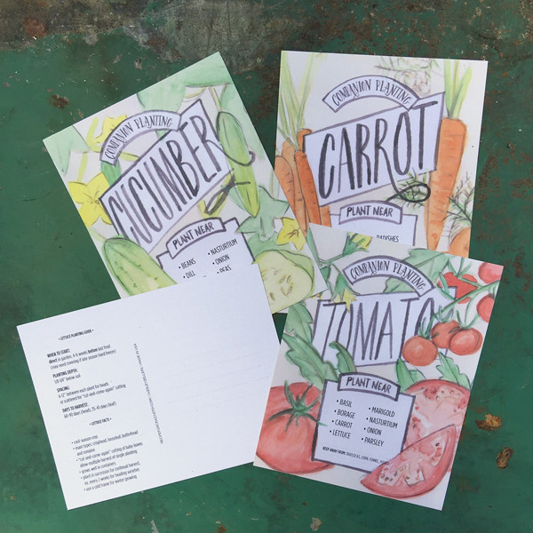 companion planting cards