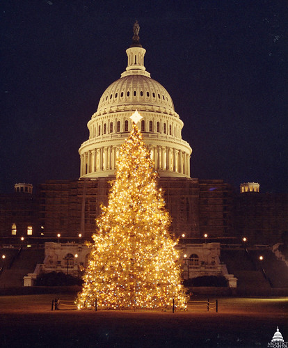 1983 U.S. Capitol Christmas Tree | by USCapitol