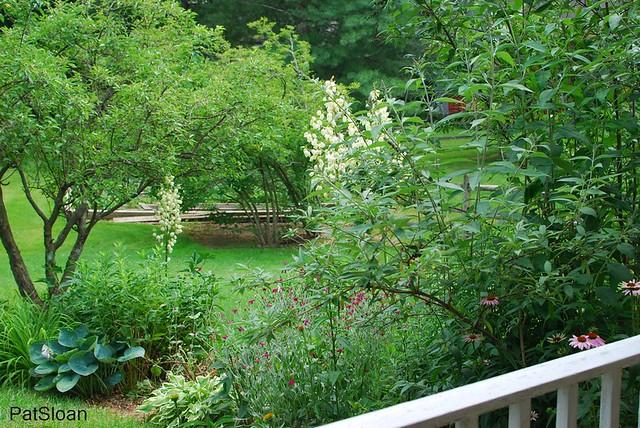 pat sloan garden