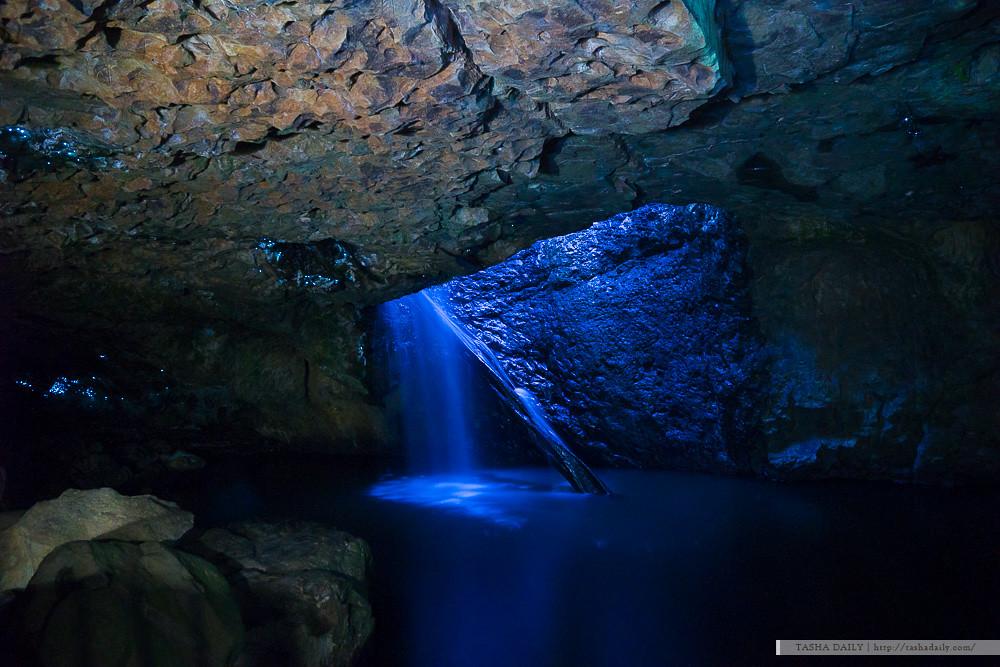 昆士蘭自由行︱Springbrook NP-Glow Worms.山谷中的螢光點點