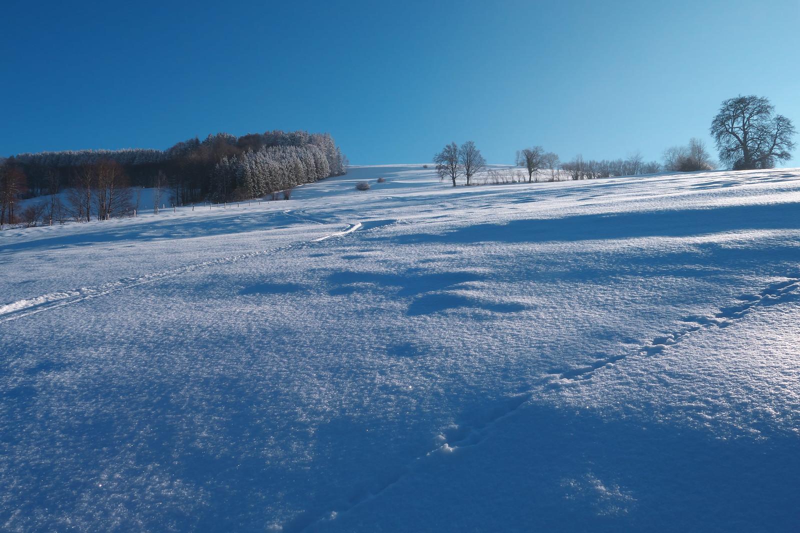 Klenot: severní svah Briefbergu