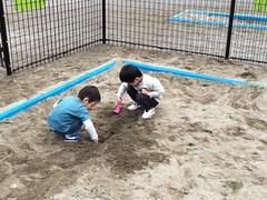 砂場で遊ぶとらちゃん